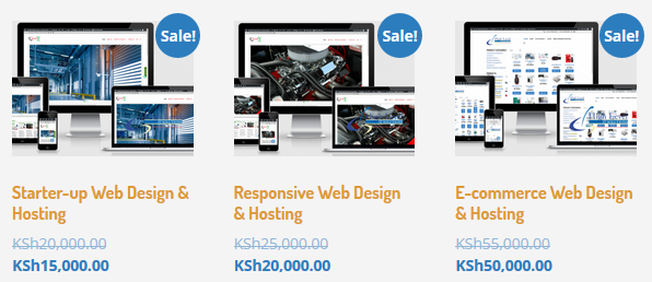 Responsive Web Design & Hosting