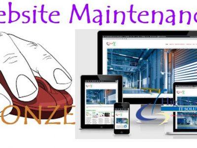 Web Maintenance Bronze Package